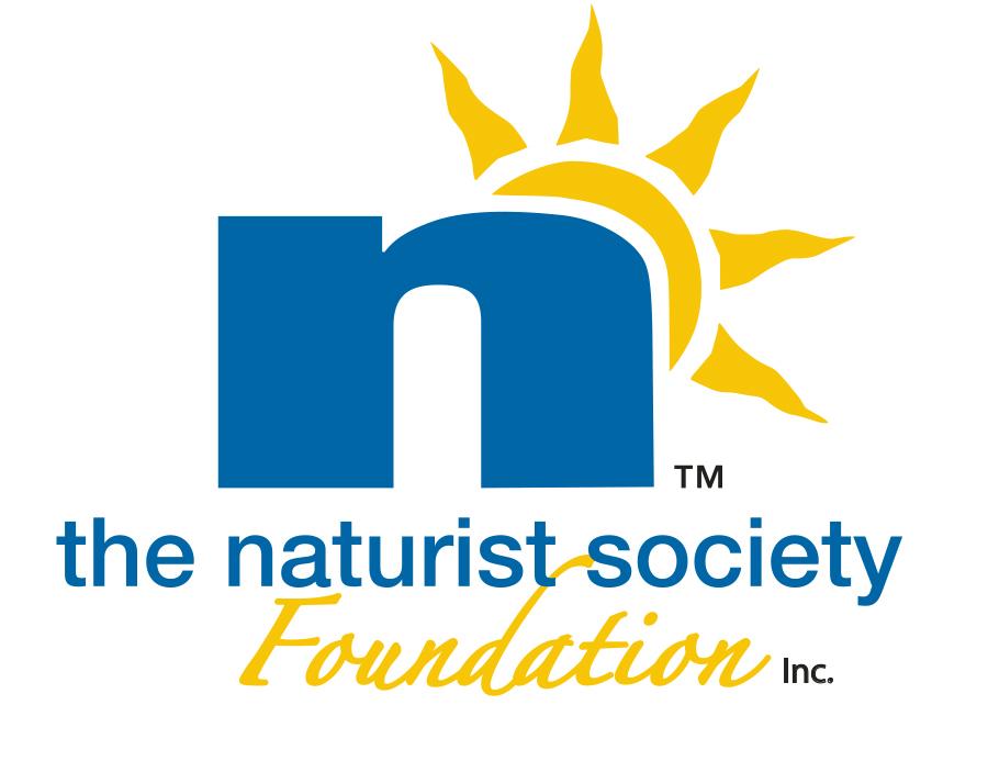 n_logo_clr Foundation