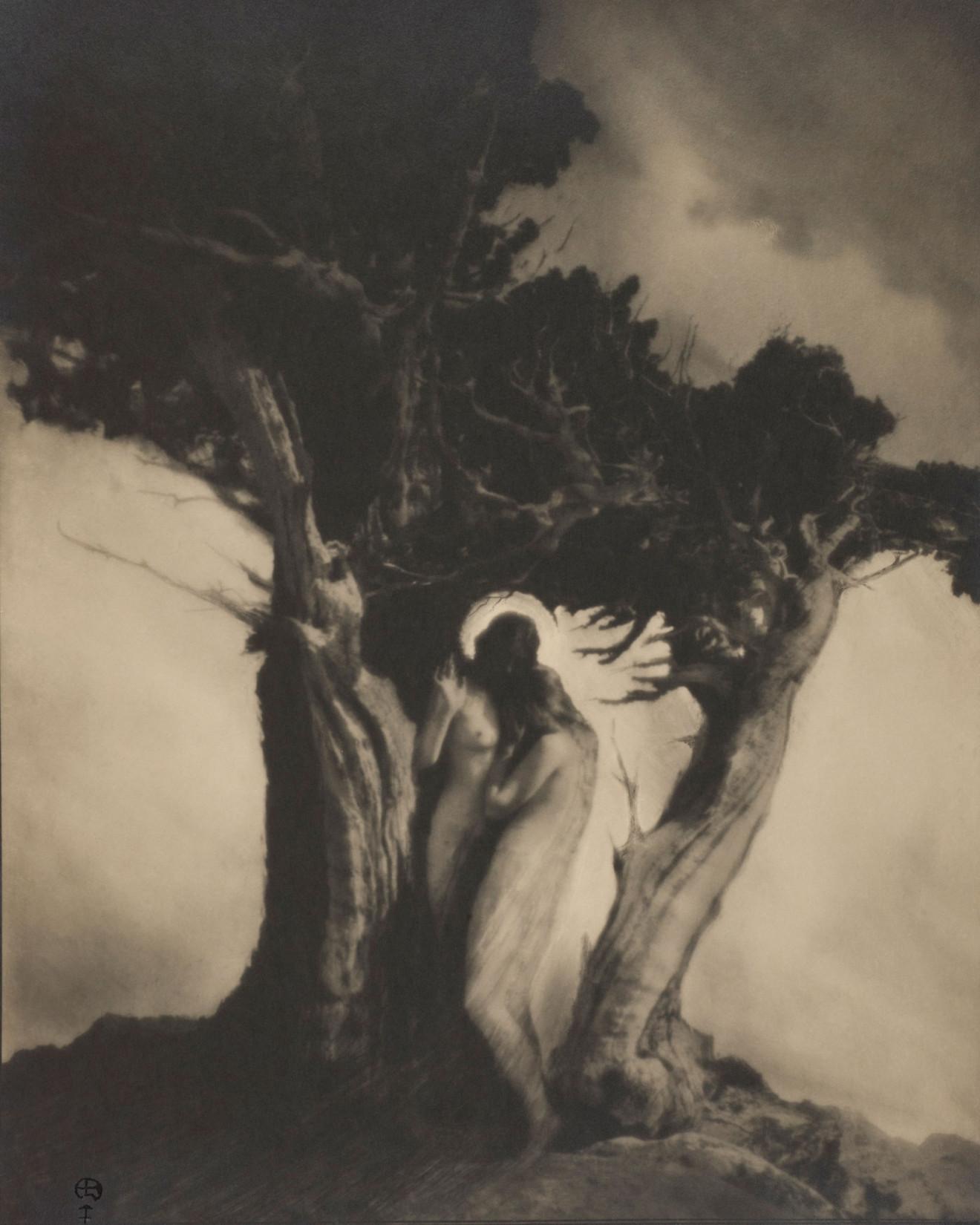 Blackman-AnneBrigman07