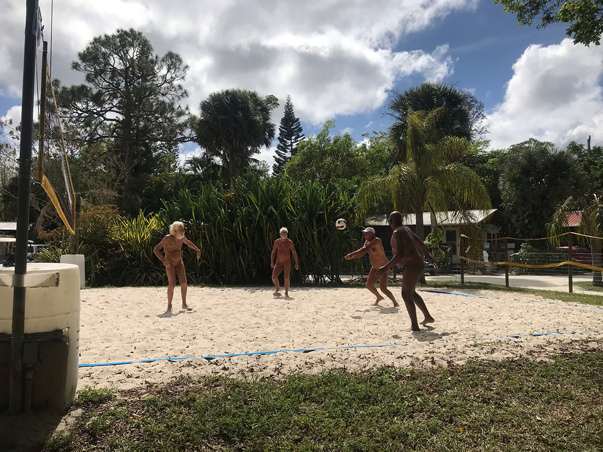 volley ball2